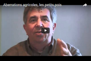 2012 11 bourguignon lievres video