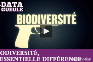 2015 02 biodiversite datagueule video