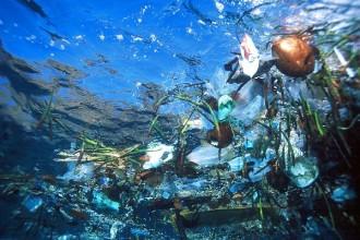 2012 05 oceans plastique