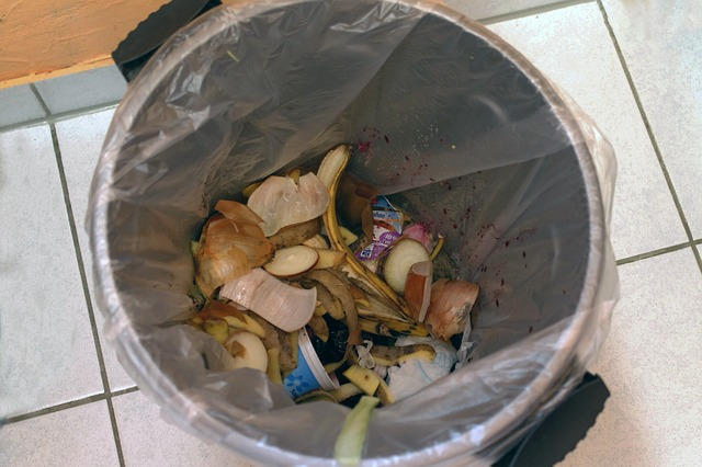 2018 02 01 dechets garbage can 261935 640