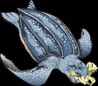 2018 06 plastique UE sea turtle 3322226 pixabay
