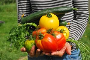 2018 07 pesticides vegetables 742095 pixabay