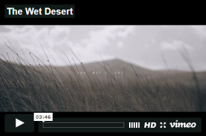2016 11 06 the wet desert video